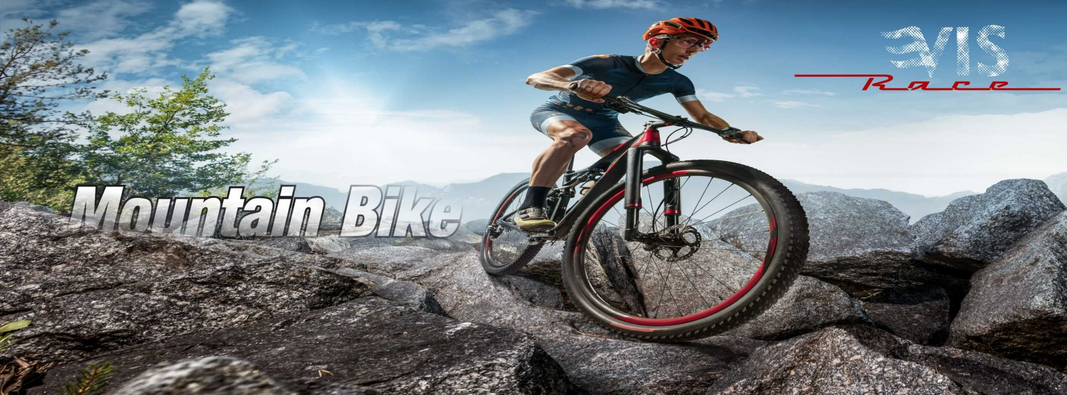 viziune cu bicicleta)